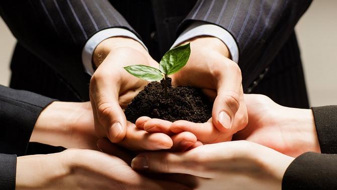 El proceso de transformación empresarial
