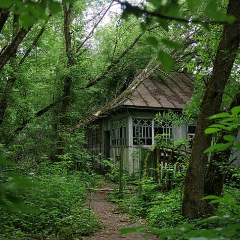 Zalissya House