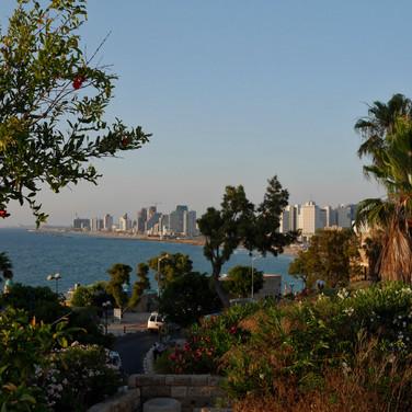 HaPisga Garden, Jaffa