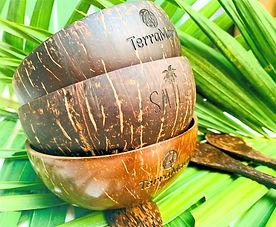 Bols en noix de coco