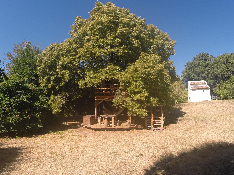 cabane été
