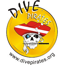 A yellow circle with a skull with a brilliant blue eye, a knife in its teeth, wearing an earing and a red and white striped pirates hat.