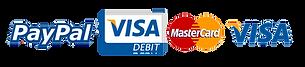 Visa Mastercard Paypal Accepted