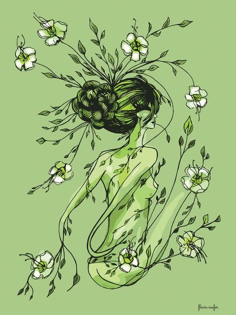Aquela das Plantas e das Ervas