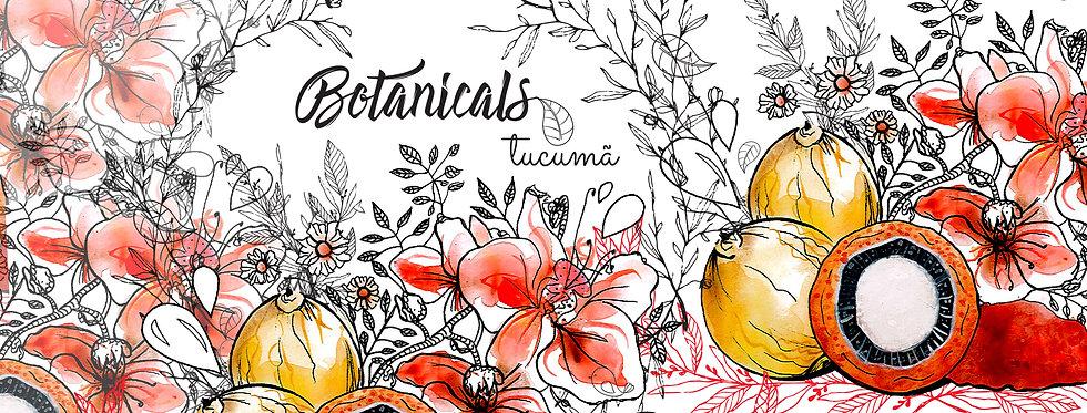 abertura-case botanicals 02.jpg