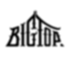 Big Top logo xparent.png