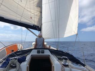 Bootsausflug mit einer traditionellen Segelyacht in Alcudia