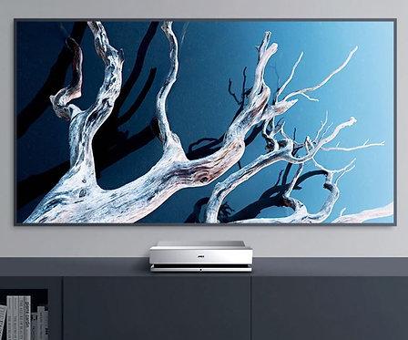 Fabulus Fresnel Light-rejecting Hard screen 100 inch