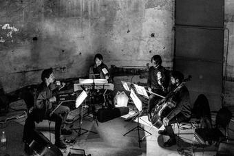 Phaedra ensemble String quartet