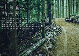 【札幌の木、北海道の椅子展】