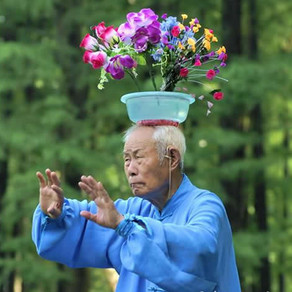 Yang style Tai Chi prevents falls, there is now top level evidence for this.