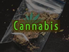 Dangers of Addiction: Marijuana