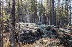 Finlande 2014-2
