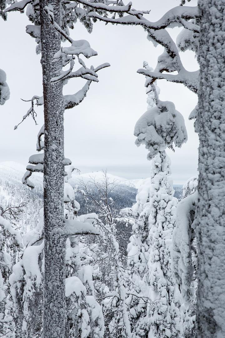 Finlande 2016-134