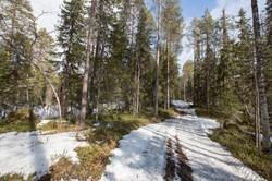 Finlande 2014-82