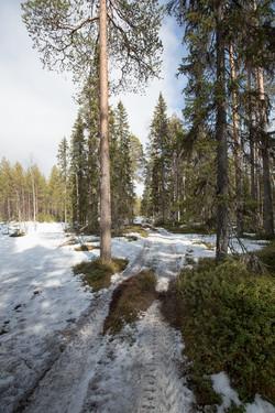 Finlande 2014-83
