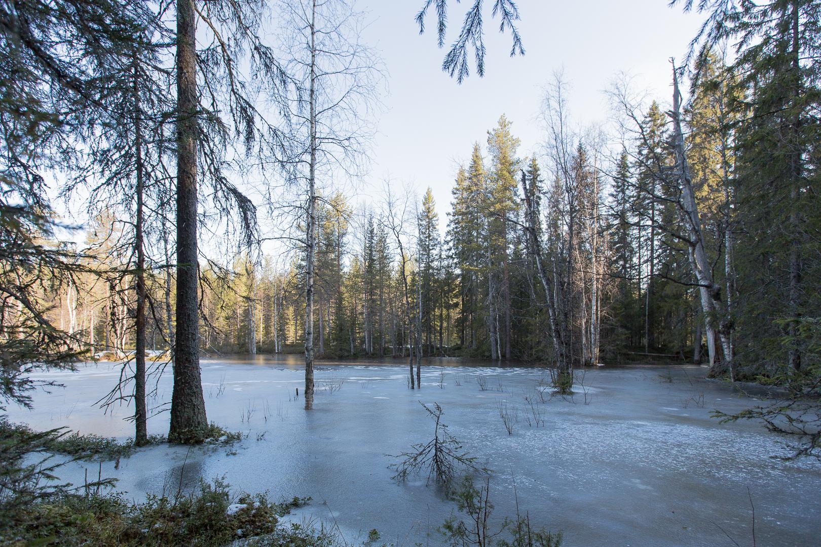 Finlande 2014-109