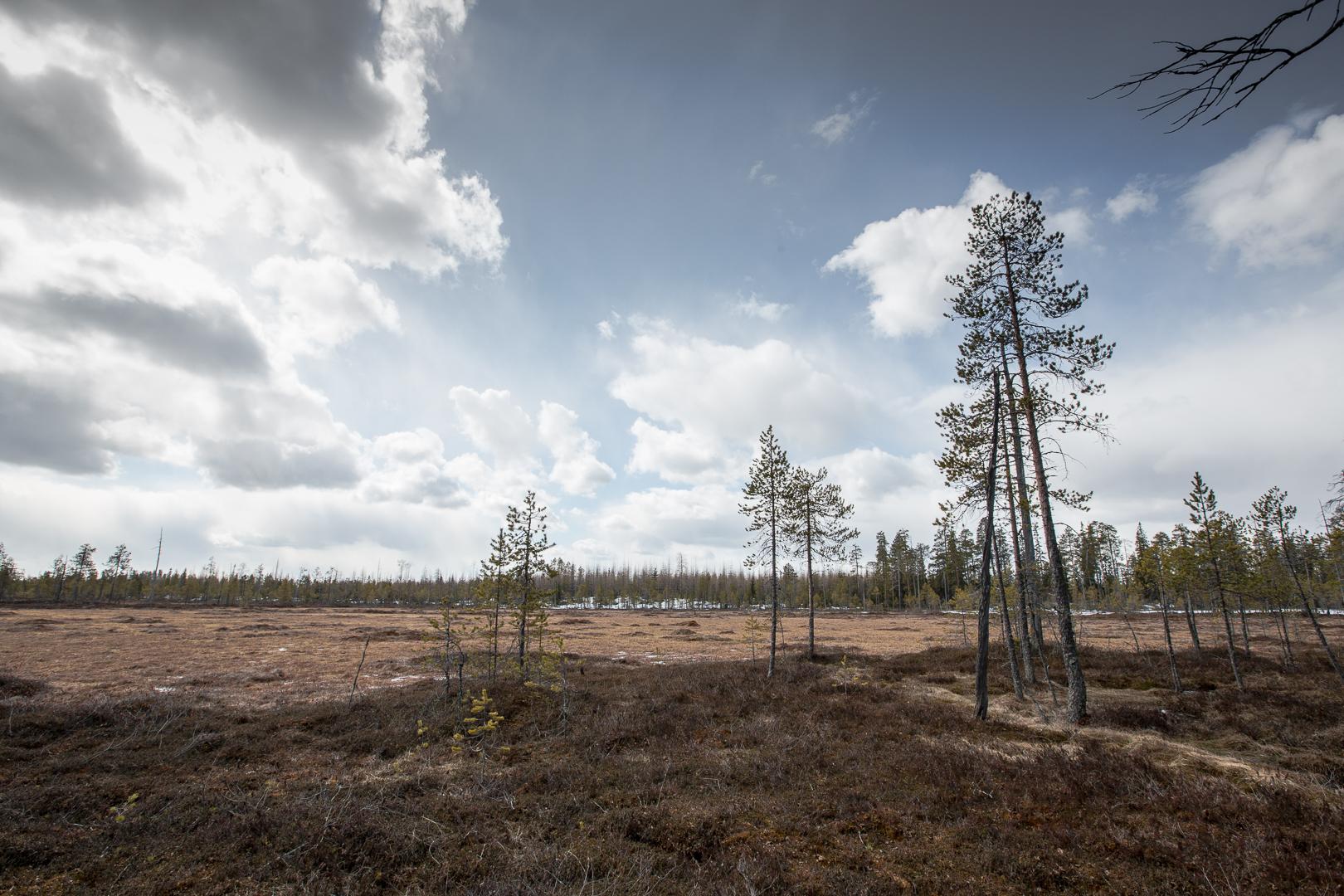 Finlande 2014-111