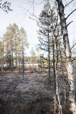 Finlande 2014-108