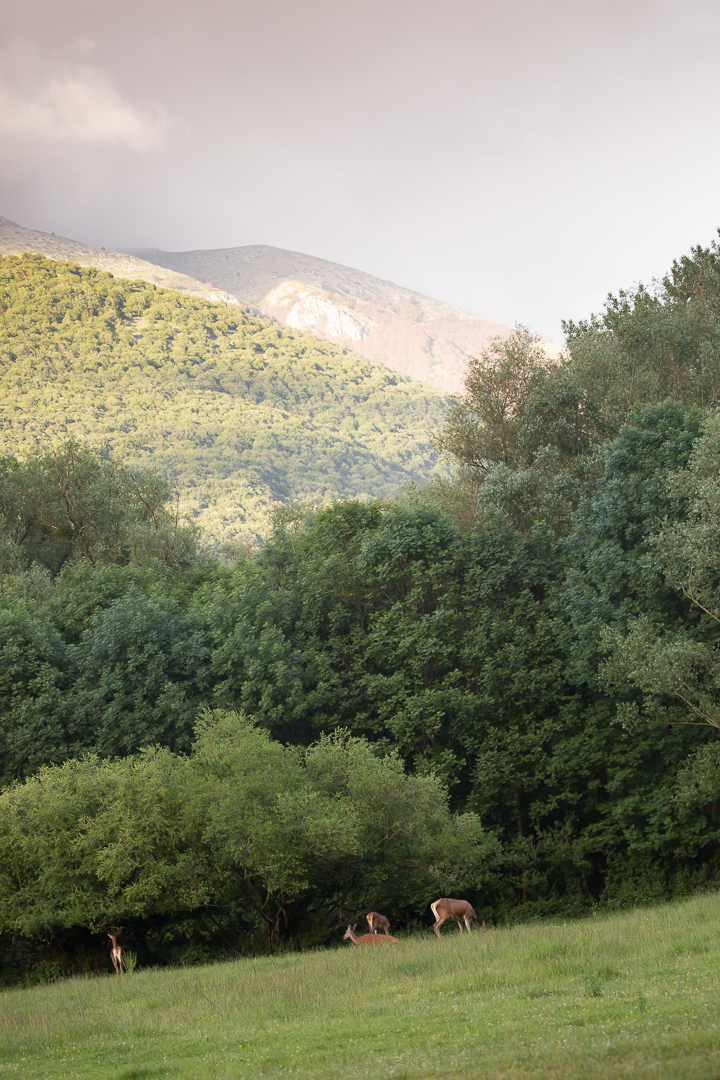 Abruzzes juin 2016-42