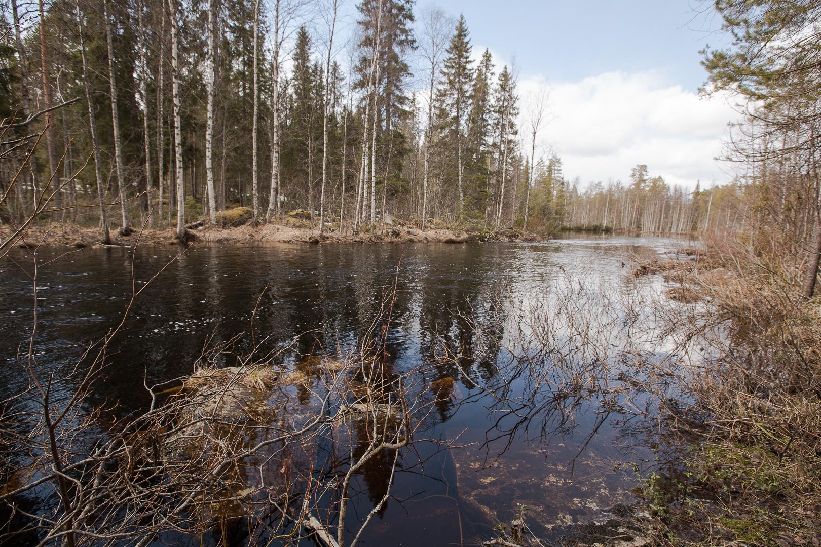 Finlande 2014-113