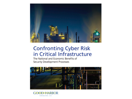 Confronting Cyber Risk in Critical Infrastructure
