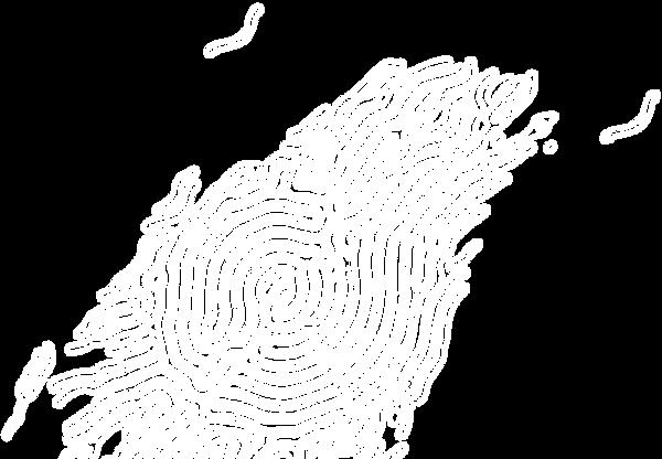 底圖流線3-02.png