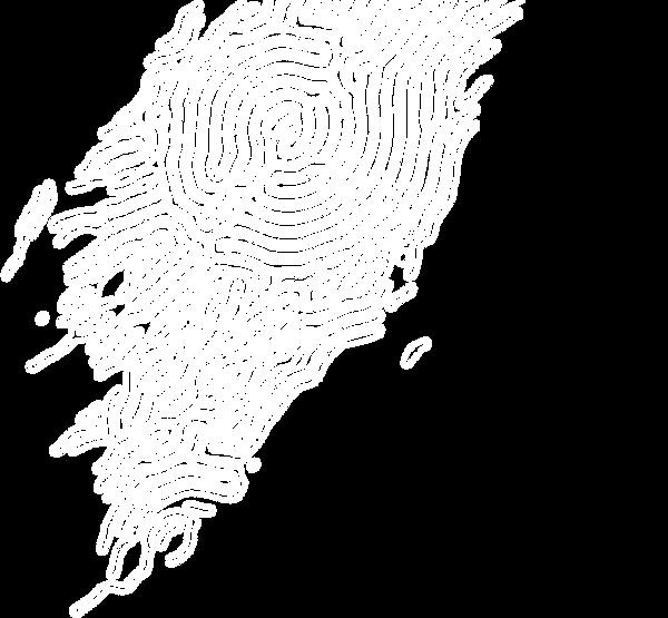底圖流線1-02.png