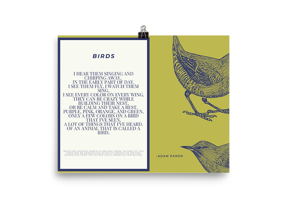 """Birds"" Poster"