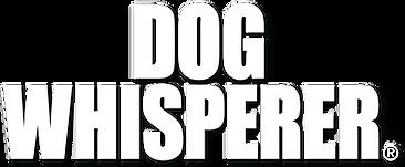 DW Banner Logo - White - w_Dropshadow.pn