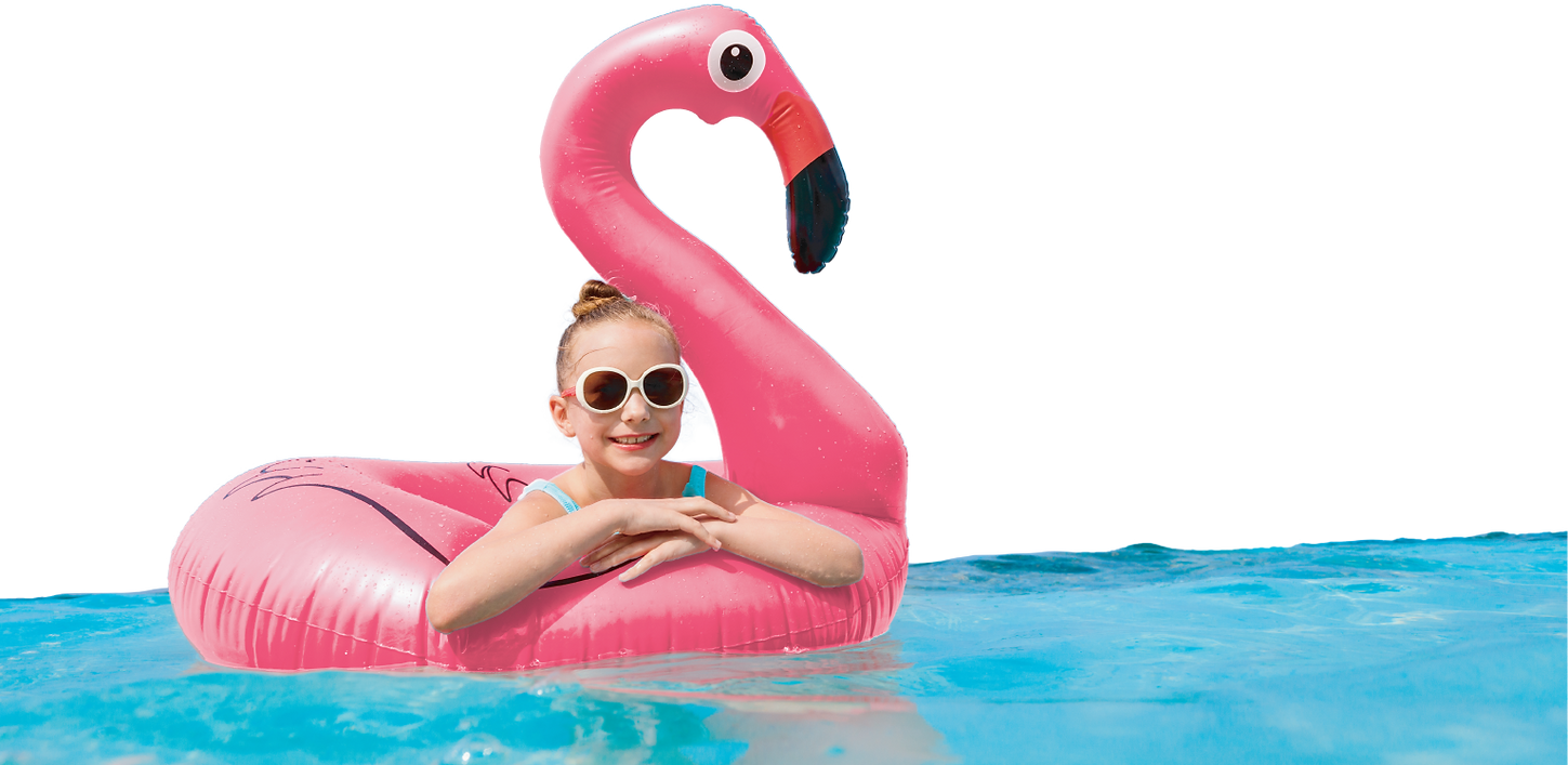 Summer-Fun-Banner---Flamingo.png