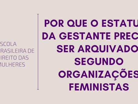 Por que o Estatuto da Gestante precisa ser arquivado, segundo organizações feministas