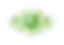 logo lideroptica.png