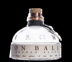 thegin_bottle.png