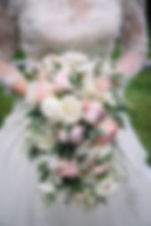 thumbnail_jp1.jpg