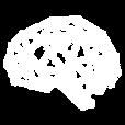 noun_Brain_291205.png