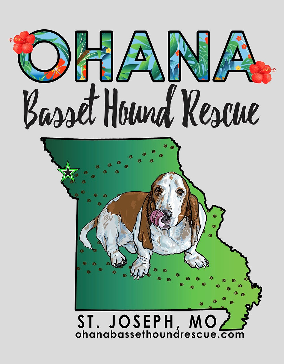 OHANA BASSET HOUND RESCUE UPDATED LOGO .