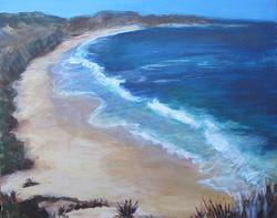 TashaGarfield-The Cove.jpg