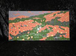 dpmosaics-Poppies-Mosaic.jpg