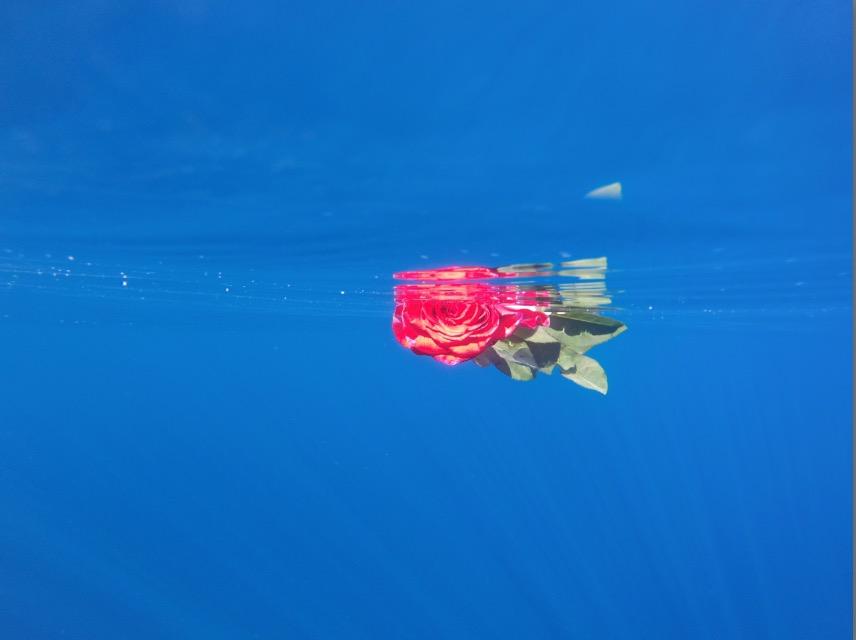 Redondo Beach: Hope Floats I