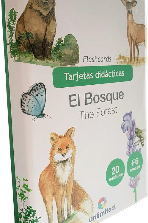 Tarjetas didácticas: El bosque
