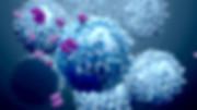 T Cells shutterstock_1357516481.jpg