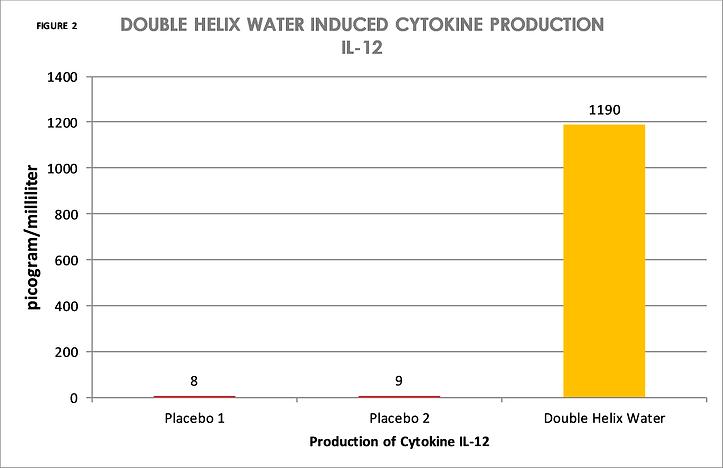 FIGURE 2 DOUBLE HELIX WATER INDUCED CYTO