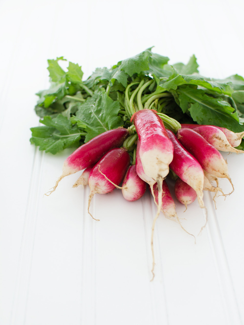 organic radishes-food and product photography -washington dc