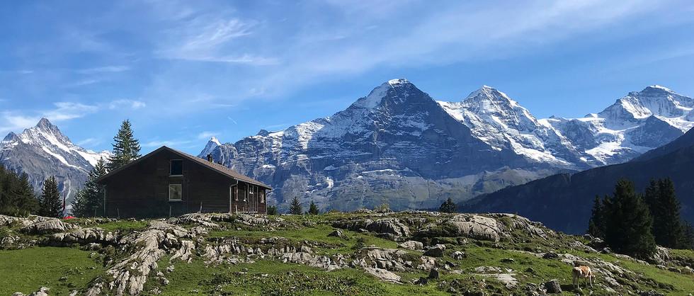 Berghaus mit Aussicht.jpg