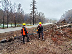 Oregon-based firm works to protect natural resources