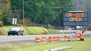 Hazard tree work along state highways suspended for holiday weekend