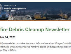 Reflecting on wildfire recovery: Read the latest news about Oregon's wildfire cleanup effort