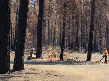 Climate conditions suspend operations in 242 Fire area