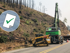 Task Force completes hazard tree removal in Thielsen Fire area